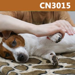 Caninology Course CN3015