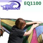 Equine Anatomy Course EQ1100
