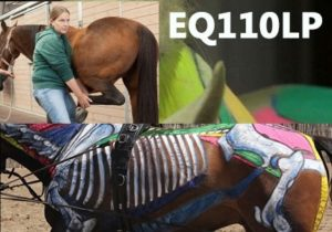 Equinology Course EQ110LP
