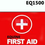 Equine First Aid Course